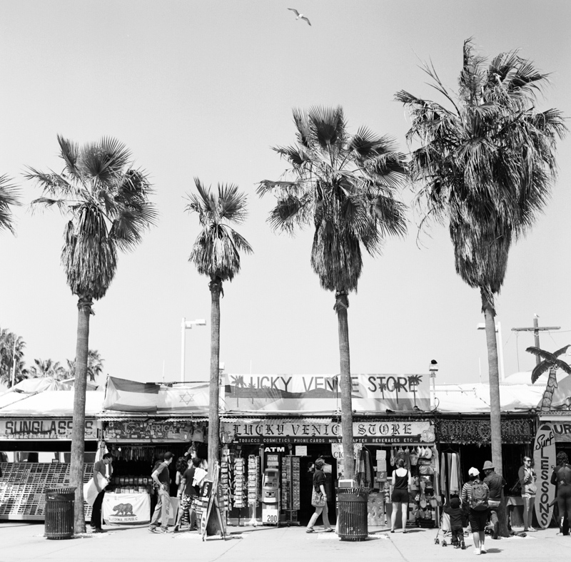 Venice california travel photography by jillian mitchell